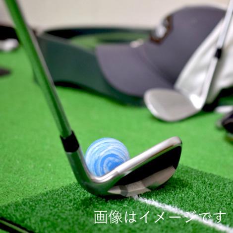 ゴルフスタジオ(SkyTrak)